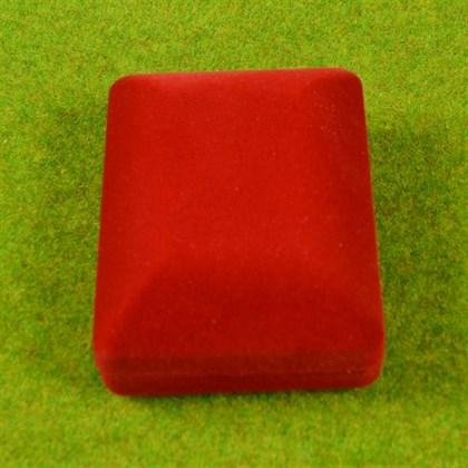 Бархатная коробочка - фото 9167