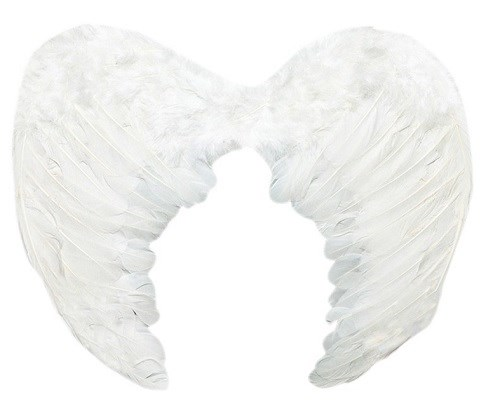 Крылья ангела - фото 9670